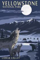 Yellowstone National Park, Montana - Lamar Valley Scene (12x18 Art Print, Wall Decor Travel Poster)