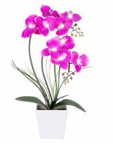 HOMESEASONS Pre-Lit Artificial Orchid Arrangement, LED Orchid Plant with 9 Lights (Purple, No Timer Function)