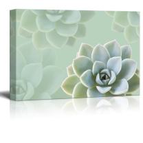 wall26 Canvas Print Wall Art - Succulent Plants on Retro Style Background - Gallery Wrap Modern Home Decor | Ready to Hang - 16x24 inches