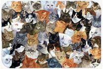 Caroline's Treasures BDBA0414LCB Cats Galore Glass Cutting Board Large, 12H x 16W, multicolor