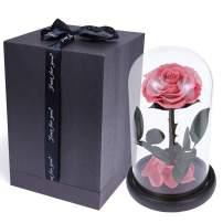 sexyrobot Beauty and The Beast Rose,Handmade Preserved Fresh Flower Real Rose with Fallen Petals in a Glass, with Exquisite Box (Dark Pink)