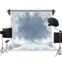Kate 10x6.5ft/3m(W) x2m(H) Holiday Winter Background Photography Frozen Snow Scenery Seamless Backdrops Photography Studio Props