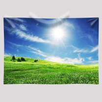 EARVO Background 7x5ft Blue Sky Backdrop Field Sunshine Photography Background Spring Outing Cotton Backdrop Studio Photo Props EA002