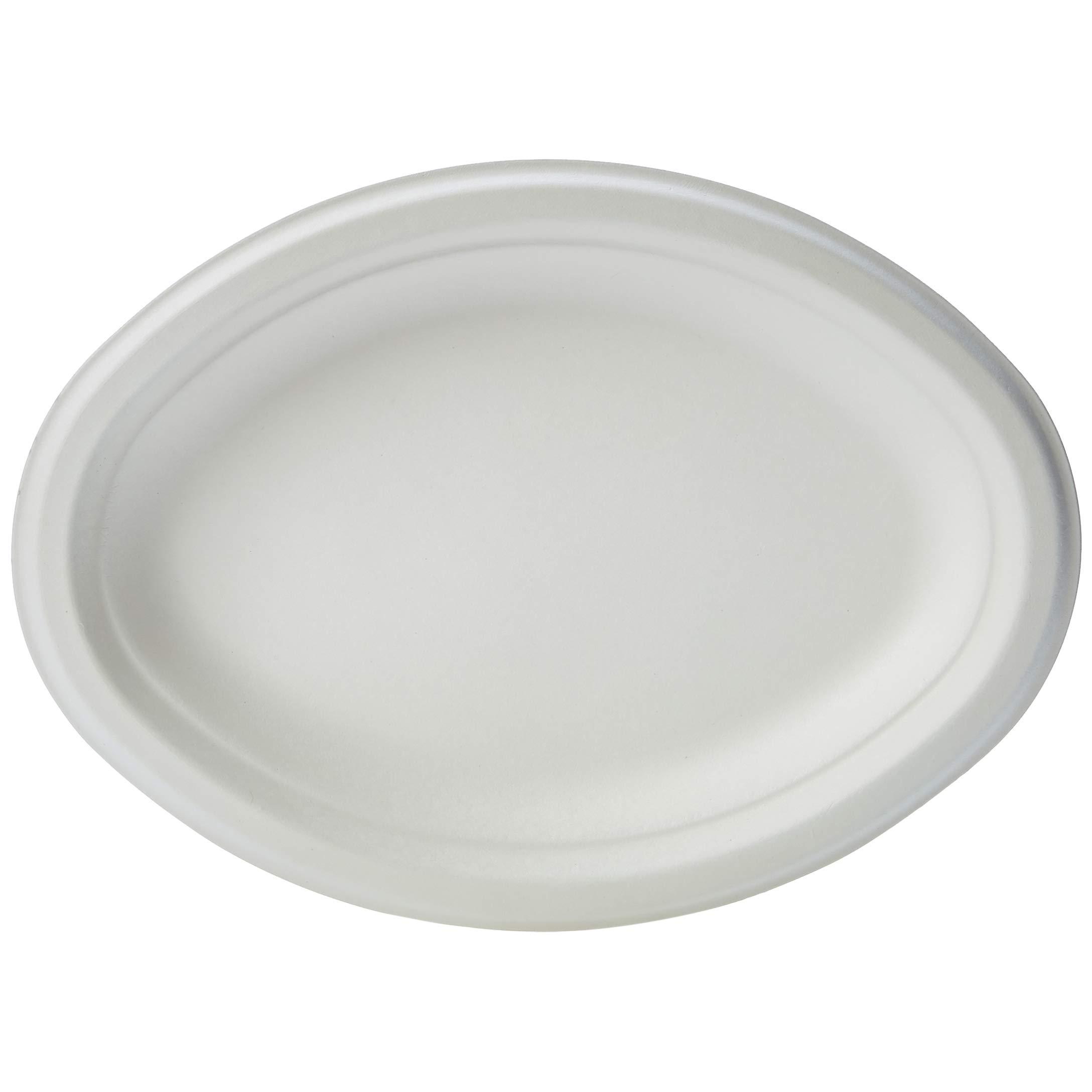 "AmazonBasics Compostable Plates, 10"" x 7.5"", Pack of 500"