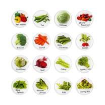 MORCART Fridge Magnets 16 Mom's Kitchen for kids,Decorative Strong Magnets for Dishwasher (Salad)