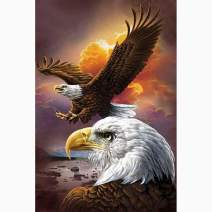 Diamond Painting Kits for Adults Kids, 5D DIY Eagle Diamond Art Accessories with Round Full Drill for Home Wall Decor - 11.8×15.7Inches