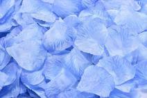 ocharzy 1000pcs Silk Rose Petals Wedding Flower Decoration (Dark Blue+Light Blue)