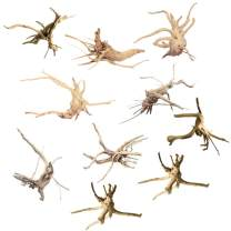 kathson Mini Driftwood for Aquarium Natural Wood Branches Fish Tank Decorations Reptiles Tree Trunk Driftwood Assorted(10 Pack)