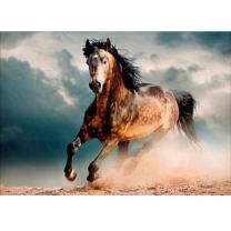 MXJSUA 5D Diamond Painting by Number Kit DIY Full Round Drill Rhinestone Picture Craft Art for Home Wall Decor Pentium Horse 12 x 16inch