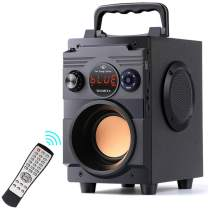 Portable Bluetooth Speaker with Subwoofer, 20W Rich Bass Wireless Stereo Outdoor/Indoor Speakers Support Remote Control FM Radio TF Card LCD Display for Home Party Smartphone Computer PC