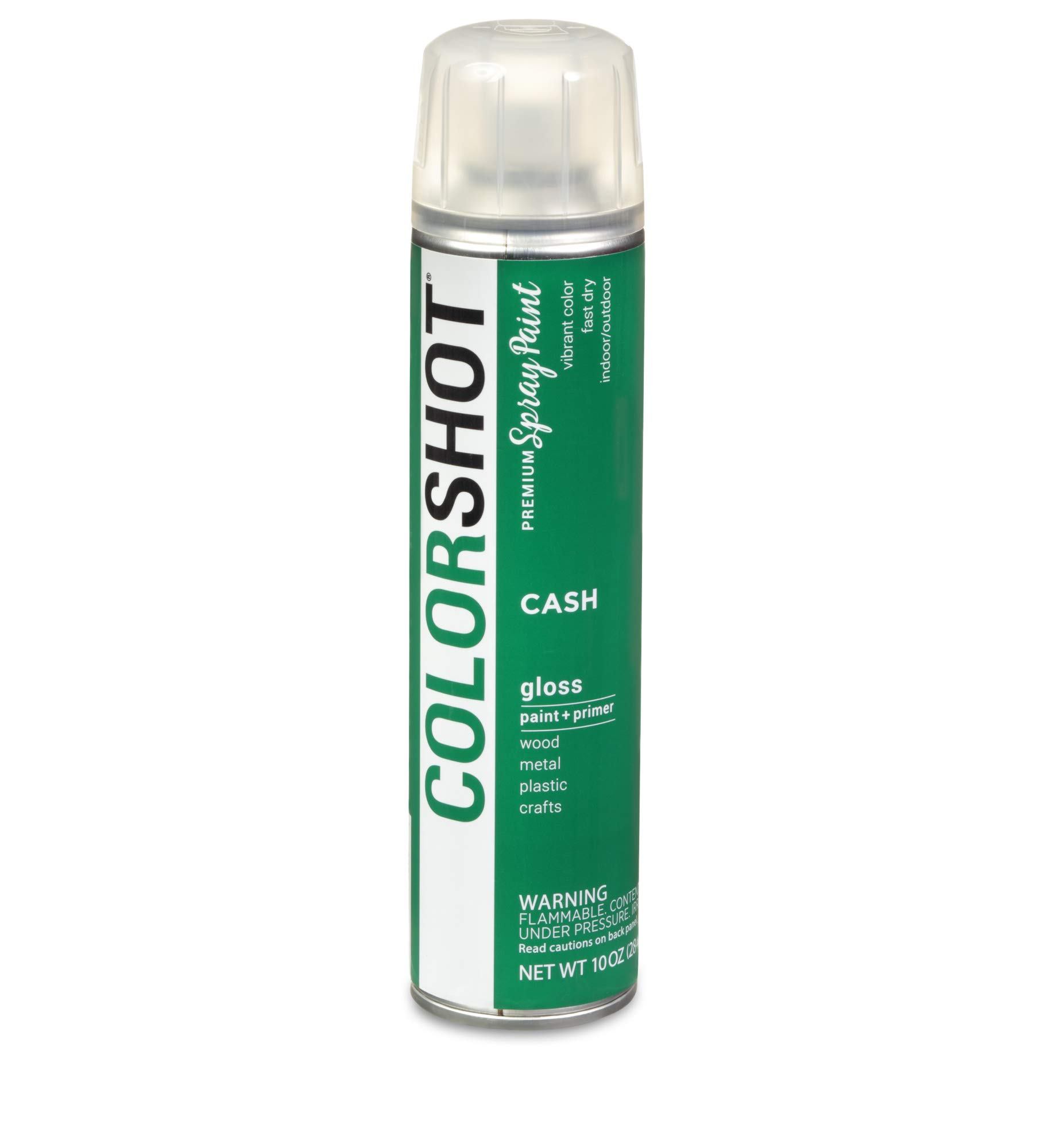 COLORSHOT Spray Paint, Cash (Green)