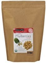 Wilderness Poets Organic Raw White Mulberries - Bulk Dried Mulberries (10 lb)