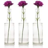 Quasimoon PaperLanternStore.com Bulk Pack (3) Camila Clear Vintage Glass Bottle Wedding Flower Vase