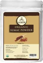 Naturevibe Botanicals Organic Sumac Powder, 100gm (3.53oz)   Non-GMO and Gluten Free   Indian Spice   Seasoning