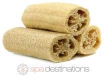 "Natural Loofah Exfoliating Bath Sponge by Spa Destinations (3 PACK of 6"" Loofah) Natural Renewable Resource."