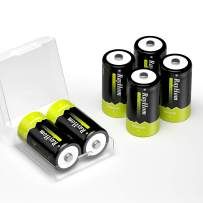 RayHom Rechargeable C Batteries 6Pack - 1.2V 5000mAh Ni-MH High Capacity C Size Battery with Box (6 Pack)