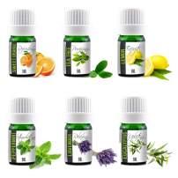 Aroma2Go Essential Oils Set, 100% Pure Undiluted, Therapeutic Grade, Plant Based in 5ML Peppermint, Lavender, Sweet Orange, Lemon, Tea Tree & Eucalyptus (Six Pack Essentials)