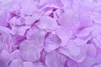 ocharzy 1000pcs Silk Rose Petals Wedding Flower Decoration (Light Purple)