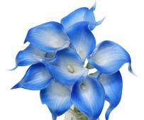 Angel Isabella 10pc Set of Real Touch Calla Lily-Keepsake Artificial Calla Lily with Small Bloom Perfect for Making Bouquet, Boutonniere,Corsage.Quality Keepsake Artificial Flower (Royal Blue Trim)