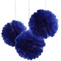10pcs Royal Blue Tissue Hanging Paper Pom-poms, Hmxpls Flower Ball Wedding Party Outdoor Decoration Premium Tissue Paper Pom Pom Flowers Craft Kit, 10 Inch