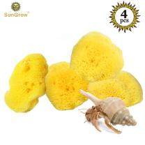 SunGrow 4 Hermit Crab Sea Sponges - Minerals Present Promote Healthy Shell Development - Assists Safer Drinking - Moisture Cocoon to Keep Crabs Moist, Hydrated - Easy Access to crabitat Water Dish