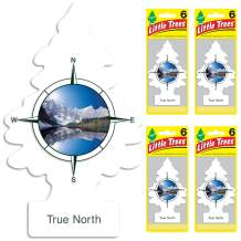 LITTLE TREES Car Air Freshener | Hanging Tree Provides Long Lasting Scent for Auto or Home | True North, 6-packs (4 count)