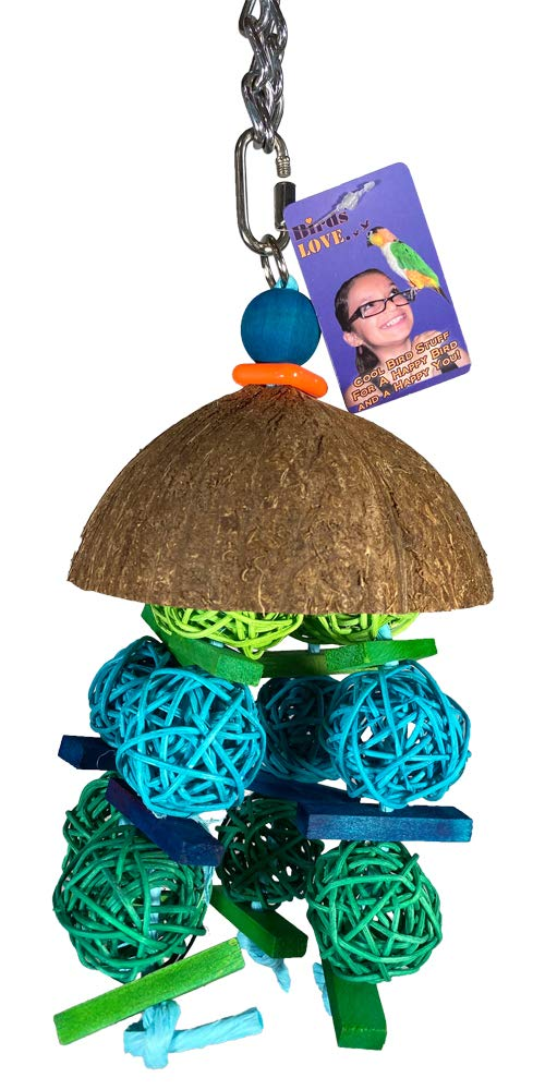 Birds LOVE Coconut Shell with Vineballs for Small to Medium Birds, Chewing Foraging Trimming Hanging Parrot Toy, Caique Small Macaw Eclectus