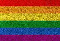 Baocicco Rainbow Backdrop Gay Colorful Rainbow Blanket Carpet Texture Horizontal Background 9x6ft Photography Studio Gay Lesbian Bisexual Backdrop Gay Backdrop Solid Color Backdrop