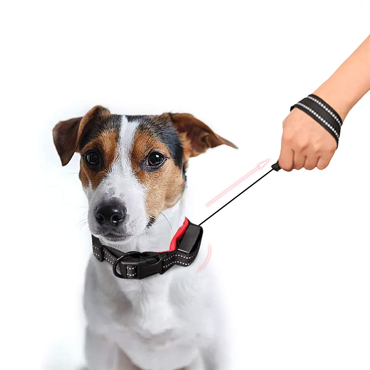 Namsan 2 in 1 Dog Leash Collar - Retractable Dog Collar Leash Dog Leash & Collar for Medium and Small Dogs,Red