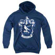 Popfunk Harry Potter Ravenclaw Logo Hogwarts Kids Youth Pullover Hoodie & Stickers