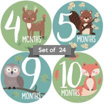 Adorable Woodland Animal 4 in Baby Monthly Milestone Stickers. Set of 24 Gender Neutral Month Decals for Boys or Girls. Newborn Unisex Picture Props. First Year Photo Aids for Babies Family Scrapbook.