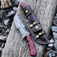 Buck n Bear BNB1225TT Damascus Tanto Tracker (G10 Red), Multi
