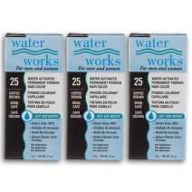 Water Works Powder Hair Color, Permanent, Coffee Brown, 3 packs