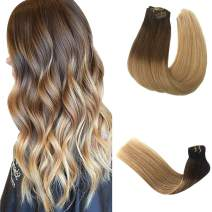 Clip in Human Hair Extensions Dark Brown to Chestnut Brown Fading to Ash Brown Ombre Clip in Real Hair Extensions Double Weft Straight Clip in Extensions for Women 14 Inch 120G