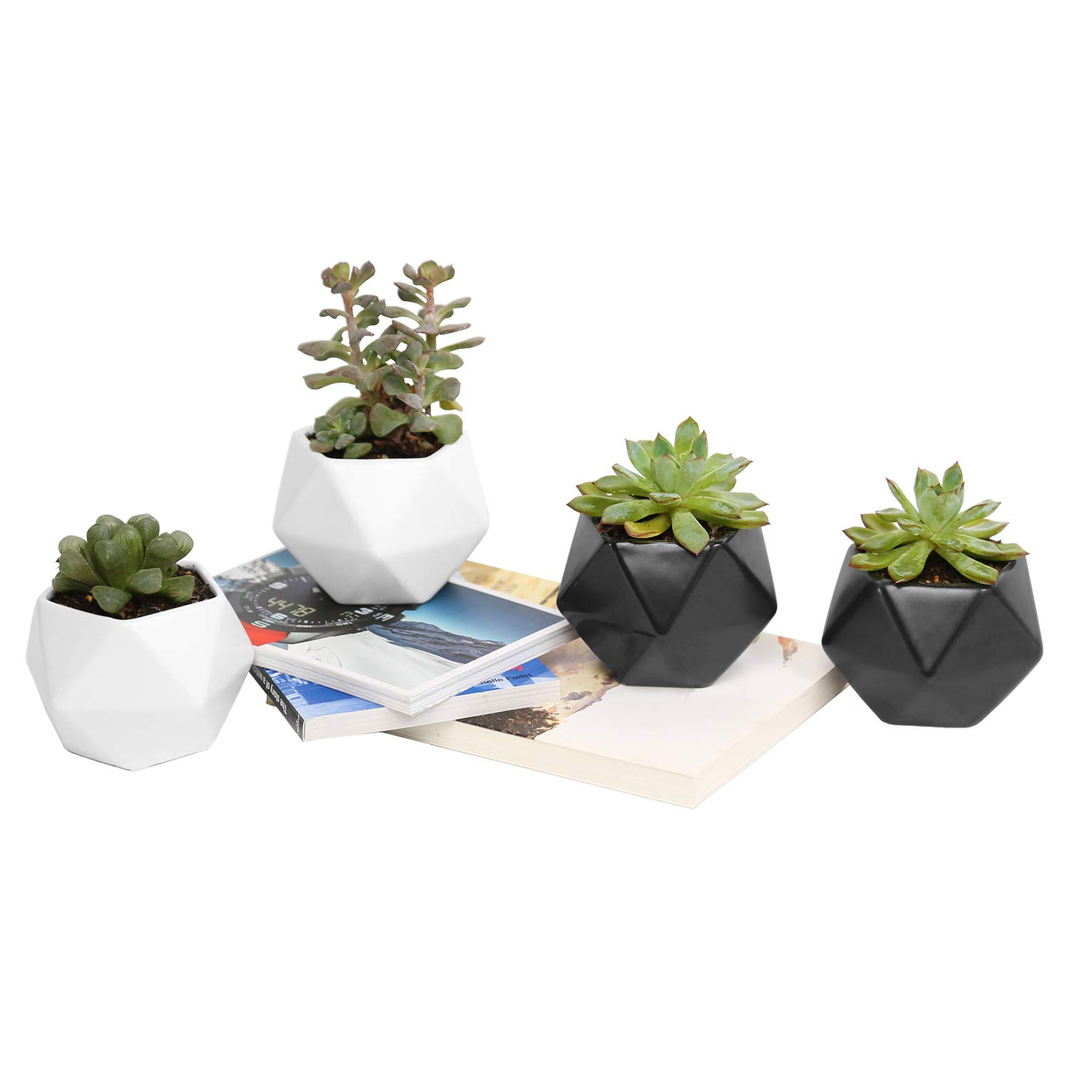 Plant Pot, Rosoli 4pcs Ceramics Indoor Planter Garden Pots for Succulents, African Violets, Cactus, Herbs - 3.5 Inch Flower Pots with Drainage Hole and Waterproof Tray (4, Black and White)