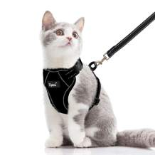 PUPTECK Reflective Cat Harness and Leash Set for Small and Medium Kitties Kitten Outdoor, Escape Proof Easily Adjustable, Soft and Comfortable