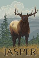 Jasper National Park, Canada - Elk Scene 15836 (24x36 SIGNED Print Master Art Print - Wall Decor Poster)