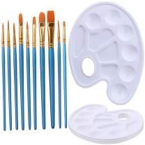 Elisel 10 Pcs Paint Brushes Watercolor Brushes Art Paint Brush Set and 4 Pcs Paint Palette for Kids and Adults to Create Art Paint palettes (10 Brush + 4 Palette)
