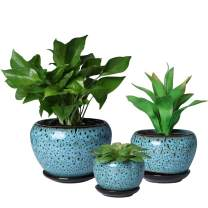 SQOWL Blue Round Ceramic Flower Pots Succulent Herbs Cactus Planters Small to Medium Sized with Saucers Peacock Pattern for Home Balcony Office Set of 3 Indoor Outdoor