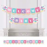 Big Dot of Happiness Scoop Up the Fun - Ice Cream - Sprinkles Baby Shower Bunting Banner - Party Decorations - Welcome Baby