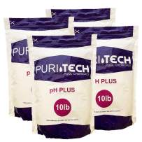 Puri Tech pH Plus 40lb 4 x 10lb Bag