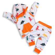 Toddler Infant Baby Boys Girls Clothes Dinosaur Hoodie Top Pants Long Sleeve Fall Outfit Set
