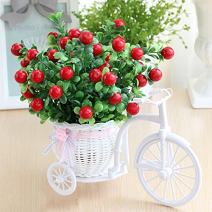 Takefuns Garden Nostalgic Bicycle Artificial Flower Decor Plant Stand Mini Garden for Home Wedding Decoration (Green)
