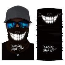 MissShorthair Men's Neck Gaiter Face Mask, Dust Protection Skull Bandana Masks