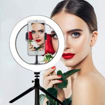 Mini Ring Light with Stand and Phone Holder,10 inch Desk Ring Light for Streaming Makeup Selfie Photography,Shooting with 3 Light Modes & 10 Brightness Leve