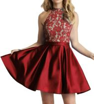 Homecoming Dress High Neck Short Cocktail Dress Sleeveless Lace Homecoming Dresses Red Pear