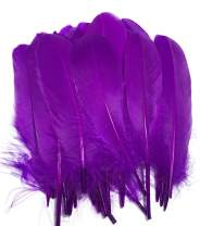 Wanjin Natural Goose Feathers 6-8 inches Clothing Accessories Pack of 100 (Purple)