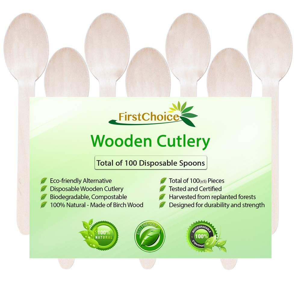 """Disposable Wooden Spoons, 100 Piece, 6"""" Length Eco Friendly Biodegradable Compostable Wooden Utensils Wooden Cutlery"""