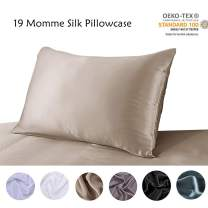 S·789 100% Oganic Silk Pillowcase for Skin and Hair,Both Sides 19 Momme Anti-Static Silk, Queen Size 20x30 Inches,Apricot Color Satin Silk Pillow Cover with Gift Package