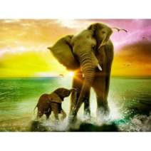 Diamond Painting Adult Art Full Drill 5D Kit Embroidery Numbers Crystal Rhinestone Arts and Crafts for Home Elephant 15.7x11.8in 1 Pack by Bemall¡